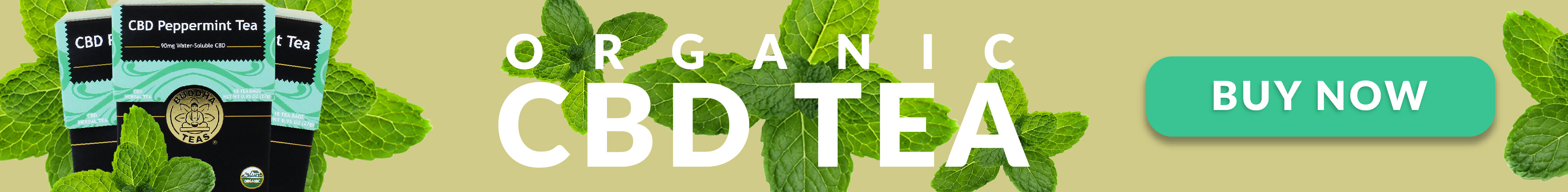 How to Make Your Own CBD Tea  CBD Tea Recipe [2019] Daintri